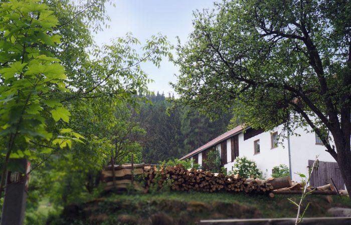 Blick auf den Bio-Bauernhof der Gutenbrunners in St. Leonhard bei Freistadt
