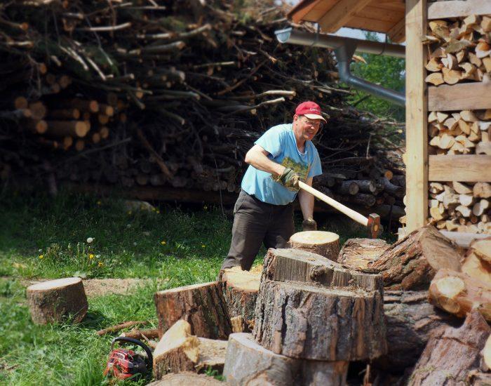 Bauer Johann Gutenbrunner beim Holzhacken vor dem Hof