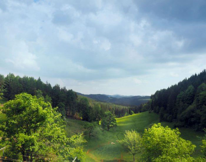Aussicht auf die Landschaft des Mühlviertels